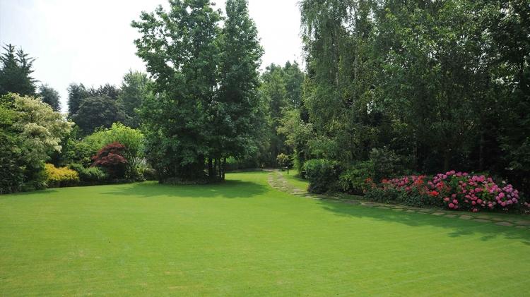 Simple come realizzare un prato di agrostide nel giardino with come costruire un giardino - Come realizzare un giardino verticale ...