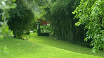 Home consigli per fare il prato - Quando seminare erba giardino ...